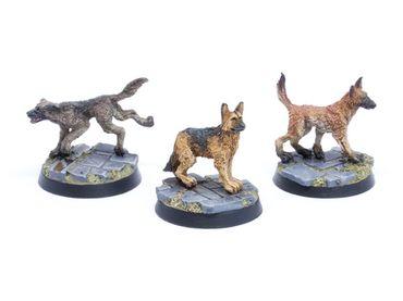 Hunde Set 1 Schäferhunde (3) – Bild 1