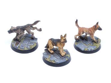 Hunde Set 1 Schäferhunde (3) – Bild 3