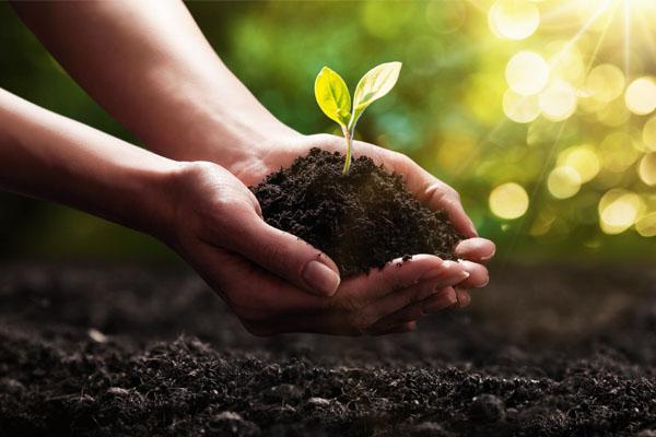 Eco friendly Produkte