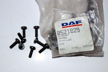 Schraube   0521829, DAF Nutzfahrzeuge