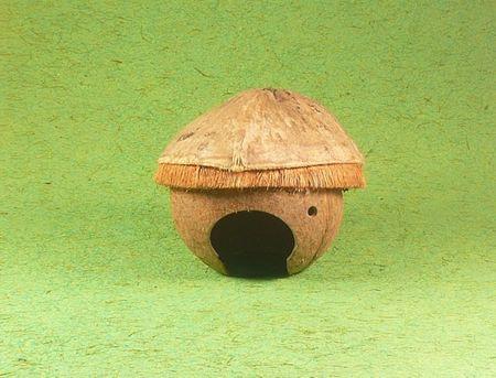 Kokosnusshäuschen Nagetier Nagerhaus Haus Nagerhöhle