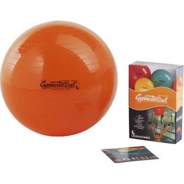 Original Pezziball Gymnastikball Standard (53cm)