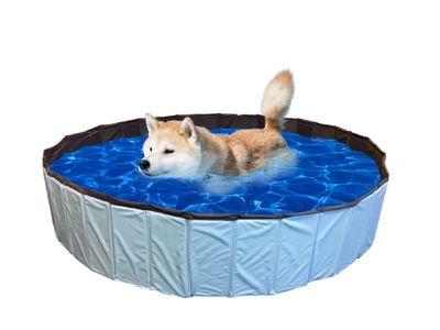 Hundepool Schwimmbecken Hundeplanschbecken Badewanne 120 x 30cm