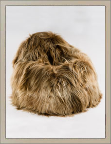 BEAN BAG | Sheepskin gold