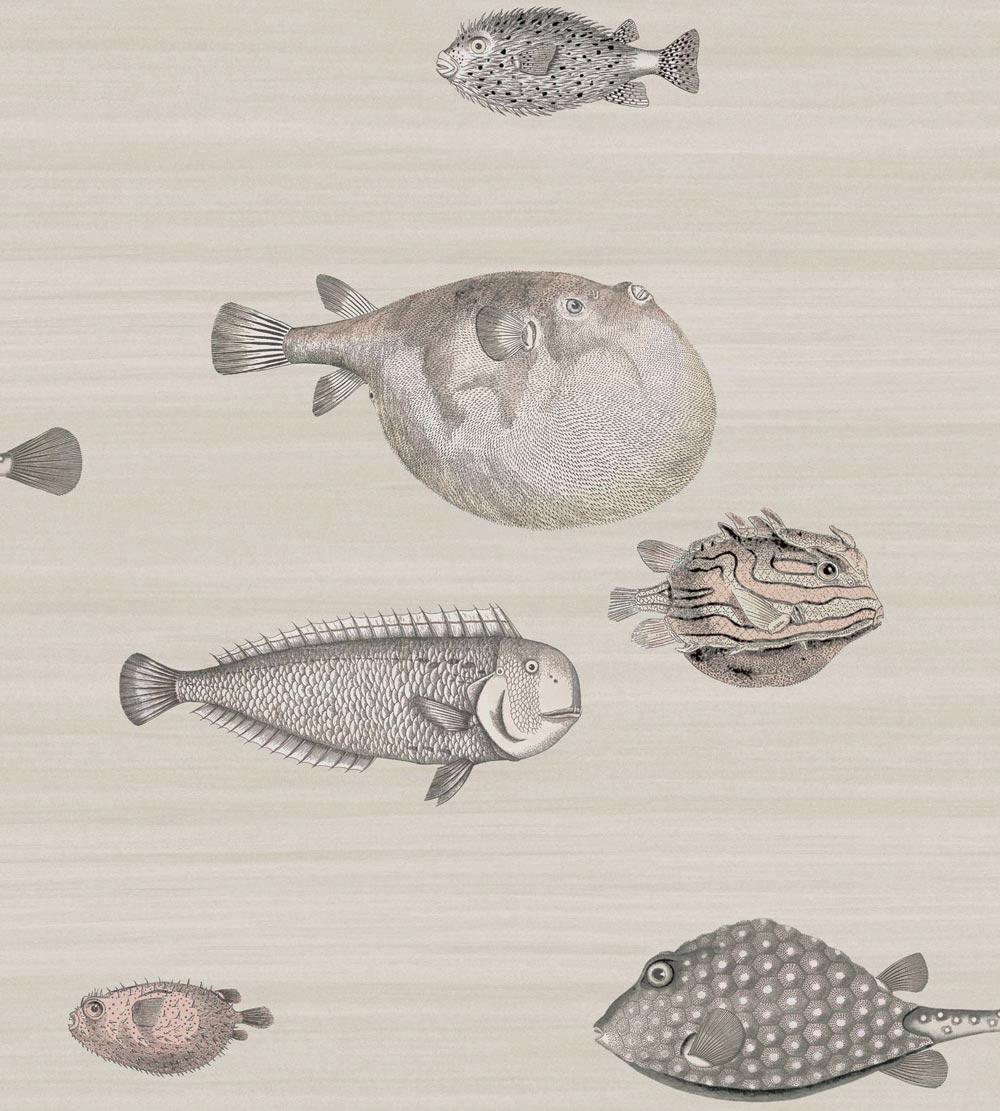 WALLPAPER | Fornasetti 2 Acquario