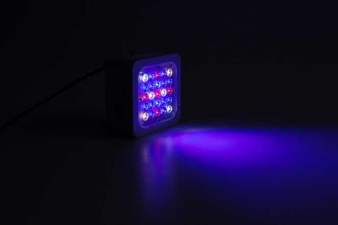 M1 Led-Grow-Lampe Wachstumsspektrum