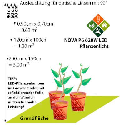 LED-vs-NDL NOVA P6 Ausleuchtung