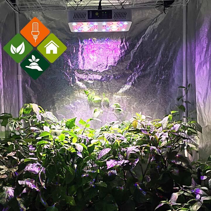 LED-Pflanzenlampe