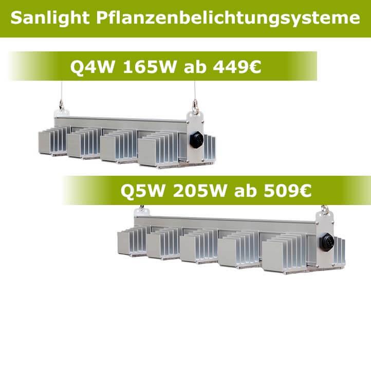 Sanlight LED-Beleuchtung