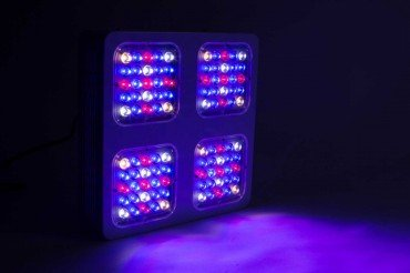 Monster M4 200W LED-Grow-Lampe (Wachstum) – Bild 6