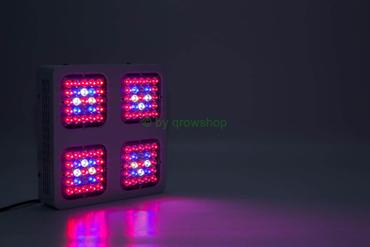 HOMEbox Ambient Q80+ – Monster M4 200W Dual Pflanzenlicht SET – Bild 2