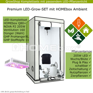 HOMEbox Ambient Q80+ – NOVA P2 Grow LED 205W – Bild 1
