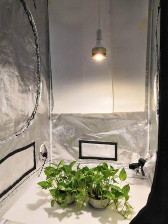 Sunny E27 50W Grow LED-Pflanzenlicht – Bild 5