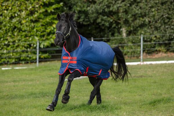 Horseware Mio Turnout Medium 200g - Dark Blue & Red