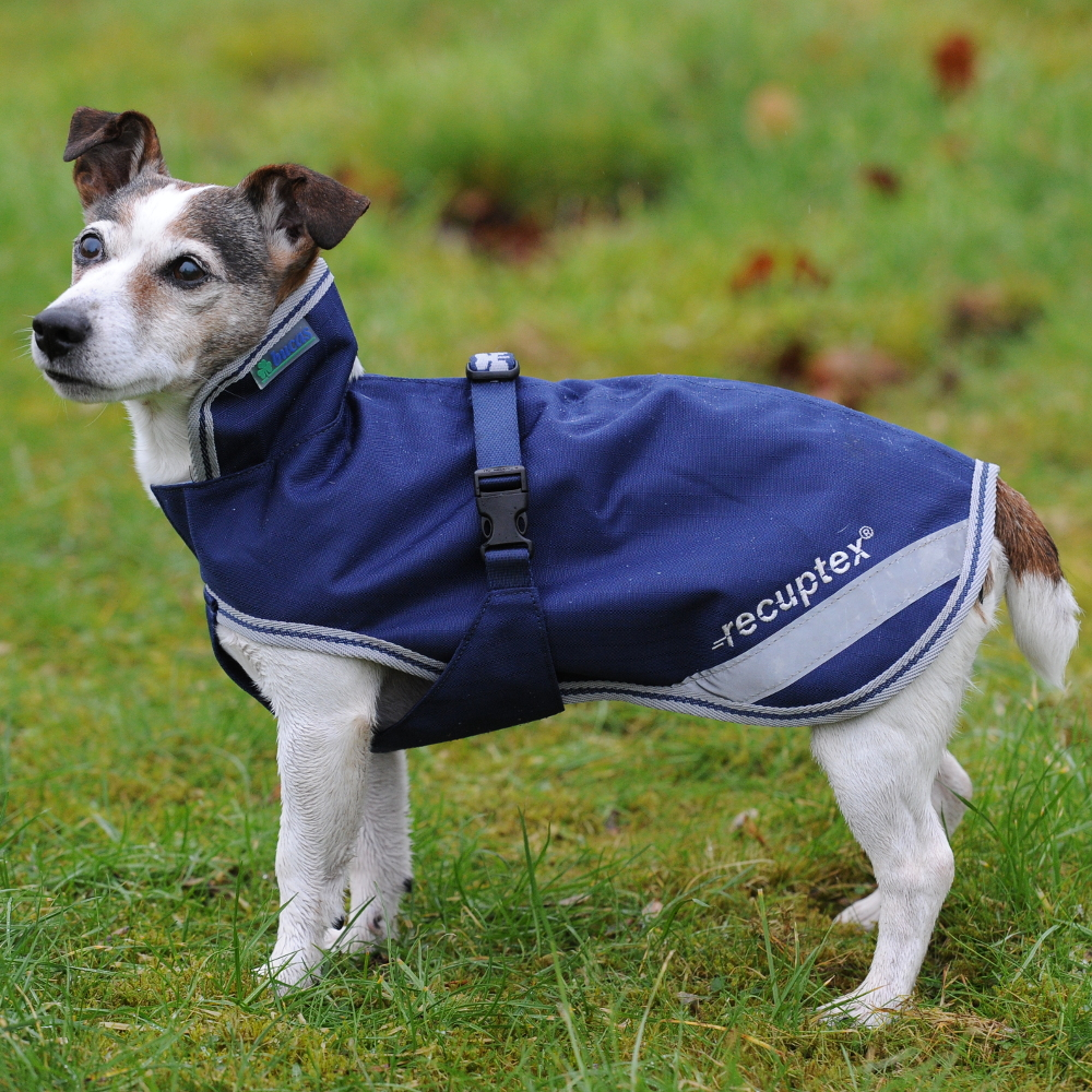Bucas Therapy Dog Rug - Navy/Silver - Hundedecke