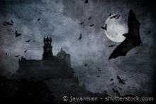 Halloween Geisterhaus mit Rabe