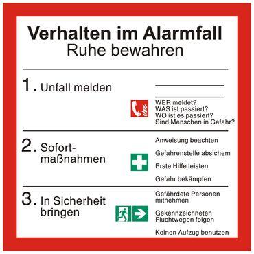 """Sicherheitsaushang Schild """" Verhalten im Alarmfall """" mit Symbolen nach ISO 7010 - 200 x 200 mm - versch. Materialien"""