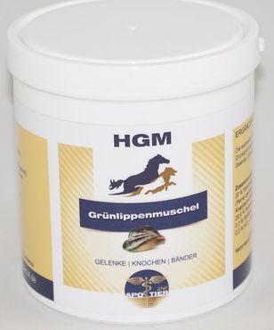 HGM Grünlippenmuschel – Bild 1