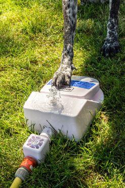 Wasserfontäne Splashy – Bild 10