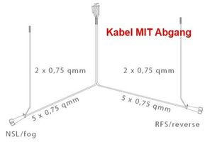 Aspöck Anhängerkabel 9m - 13-polig Stecker - Kabelbaum + 2 x 0,2m Abgang DC