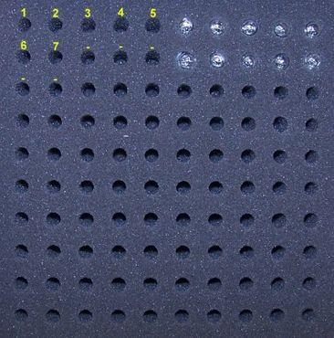 22 Watt Birne passend für Maglite Charger - ultrahell – Bild 2