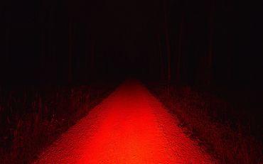 Lupine Rotlicht StVZO Fahrrad Rücklicht mit Bremslicht aufladbar  – Bild 6