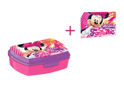 Disney Minnie Mouse Brotdose Lunchbox & Waschlappen