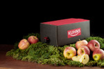 Kuhns Apfelsaft Naturtrüb Bag in Box 2x5,0l 001