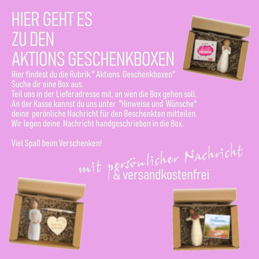 Aktions Geschenkboxen