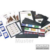 Schaubek 1043 schaufix-Folienhüllen 210 mm x 43 mm - schwarz (Packung per 25 Stück)