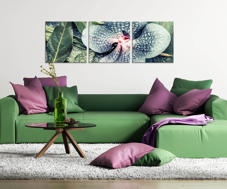 Artissimo, Glasbild Mehrteilig XXL, 3 Teilig Ca.150x50cm, AG4023A, Tropical