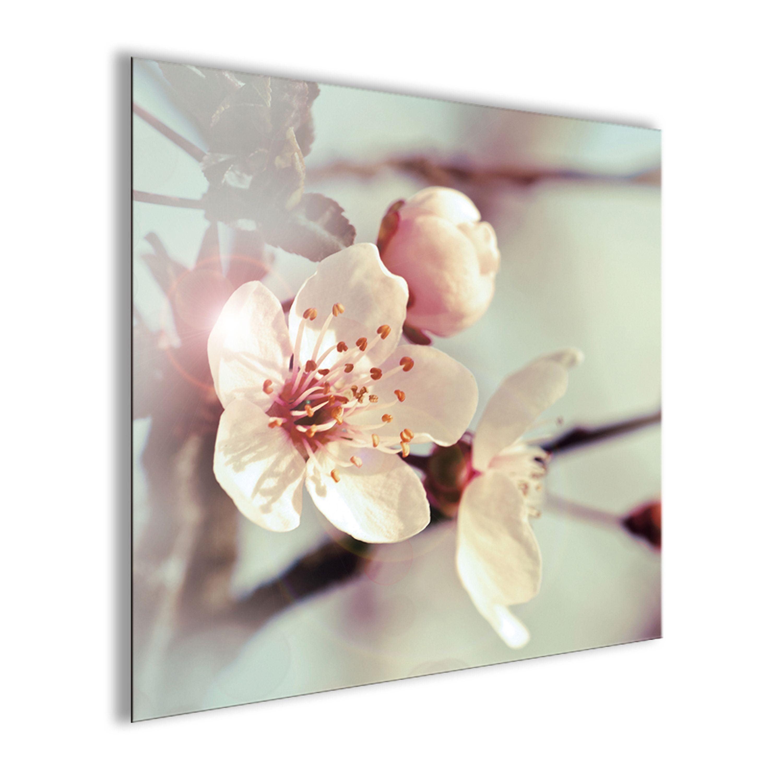 Blumen Poster Wohnzimmer Test