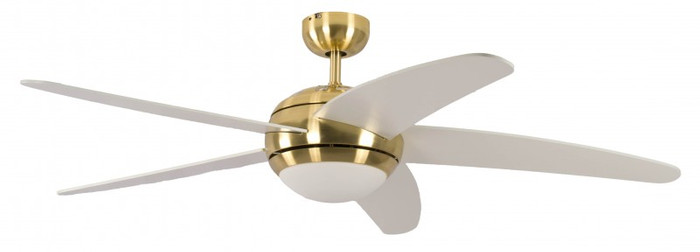 Melton Brass, Blades White with Remote Control