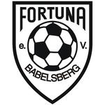 Fortuna Babelsberg 001