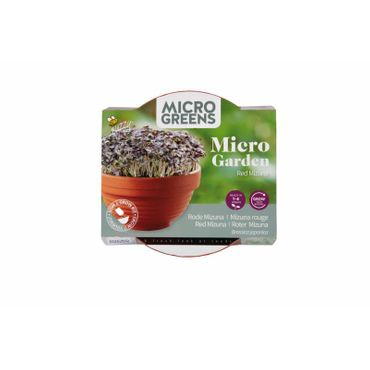 Buzzy® Microgreens terra cotta Mizuna Rot