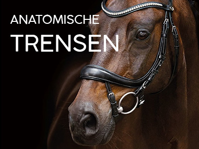 Trensen / Kandaren / Gebisse