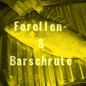 Forellen & Barsch Angelrute
