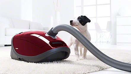 Complete C3 Cat&Dog Hardfloor PowerLine - SGEE1