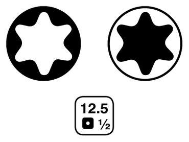 "KRAFTPLUS® K.151-0019 Steckschlüssel-Satz 1/2"" T-Profil / E-Profil - 19-tlg. – Bild 3"