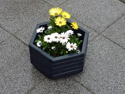 """6-eck Blumenkübel """"Olli"""" 35cm"""