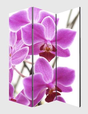 Foto-Paravent Paravent Raumteiler Trennwand M68 ~ 180x120cm, Orchidee – Bild 3