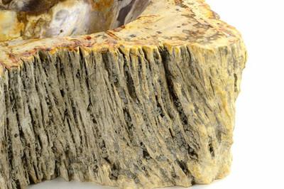 DIVERO Waschbecken versteinertes Holz Unikat Naturstein Fossil Steinwaschbecken – Bild 3