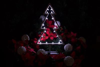 20 LED Dekoleuchte Baum kalt weiss Weihnachtsbaum Lichterbaum Dekobaum 38 cm – Bild 4