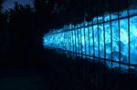 Led Gabionen Licht Beleuchtung LED 2x0,60m länge 360° Farbe blau Garten 230 Volt 001