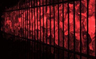 Led Gabionen Licht Beleuchtung LED 3x0,8m länge 360° Farbe rot Garten 230 Volt