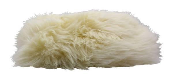 CLEANOFANT Lammfell-Fahrzeug-Waschhandschuh SHEEPY - Premium – Bild 1