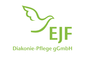 EJF auftragsrad ebike