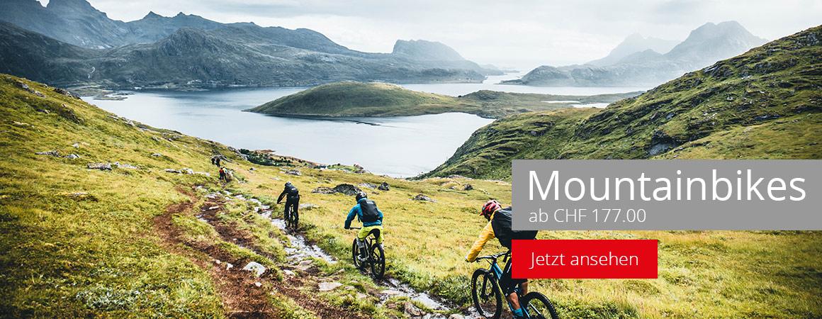 Mountainbikes günstig kaufen