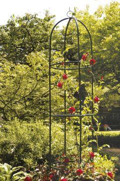 Rosensäule grün