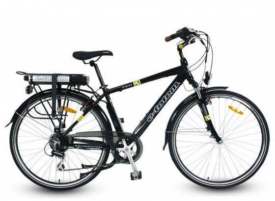 TOTEM Herren E-Bike